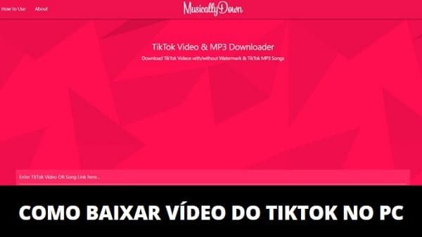 Como Baixar Vídeo do TikTok no PC