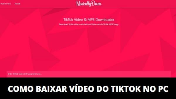 Como Baixar Vídeo do TikTok no PC